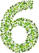 Spring green leaves. eco number 6