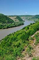 Rhein vor Kaub