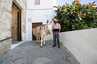 Juanino with one of his donkeys at the gate of the Castle in Vejer de la Frontera, Andaluica, Spain. Donkeys can be hired for walking or riding around...
