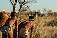 San or Bushman men stalking Burchell´s zebra (Equus quagga burchellii). Haina Kalahari Lodge. Botswana.