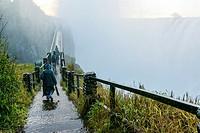 The path and bridge to The Knife Edge. Victoria Falls. Zambia.