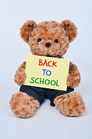 Cute teddy bear holding a yellow Back to School sign isolated on a white background.