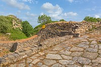 Ruins of ancient Troy, Canakkale Province, Turkey.