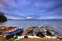 Boats moored up on the shore of Lough Owel near Mullingar, County Westmeath, Ireland.