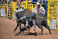 Rodeo competition during Navajo Nation Fair, a world-renowned event that showcases Navajo Agriculture, Fine Arts and Crafts, with the promotion and pr...
