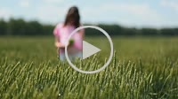 Young woman making selfies in green wheat field