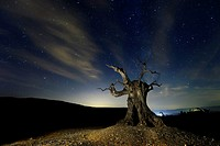 Tabernas is a Spanish municipality in the province of Almeria, Andalusia, located in the region of Los Filabres-Tabernas.Su desert it is known worldwi...