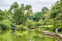 Swan Lake at Singapore Botanic Gardens, Singapore.