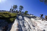 Climbing Half Dome rock at Yosemite national Park, California USA.