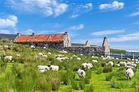 Achill Island, County Mayo, Ireland, Europe.