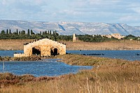 Riserva naturale orientata Oasi Faunistica di Vendicari, Noto, Province of Siracusa, Sicily, Italy, Europe.