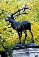 Thompson's Elk (David P. Thompson Memorial Fountain) statue, Chapman Square, Portland, Oregon.