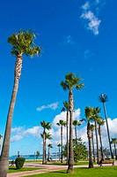 Jardins de la corniche, at end of city beach, Tangier, Morocco, Africa.
