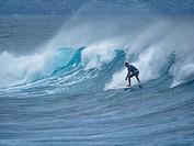 Maui Surfer.