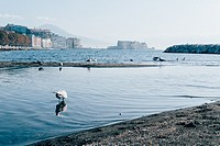 View of Naples promenade with Vesuvio and Castel dell´Ovo at the horizon