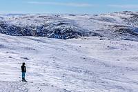 Kangerlussuaq, Artic Circle, Greenland, Europe.