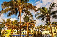 south beach; miami; florida; usa; america;.