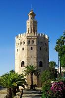Sevilla (Spain). Torre del Oro in the city of Sevilla.