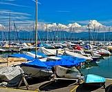 Aberiaux Marina, Port des Aberiaux at Lake Geneva, Prangins, Vaud, Switzerland.