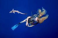 Female scuba diver look on fish Remora (Echeneis naucrates) in blue water, Indian Ocean, Maldives.