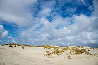 dunes and blue sky with white clouds at terschelling, holland
