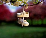 little child´s shoes hanging on tree