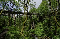 Old bridge at Latourell Falls is a waterfall along the Columbia River Gorge in Oregon, within Guy W. Talbot State Park. The Historic Columbia River Hi...