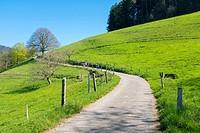 Path though countryside in early Spring. Münstertal, Breisgau-Hochschwarzwald, Baden-Württemberg, Germany.