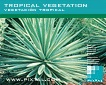 Vegetación tropical (CD104)