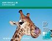 Animales (CD122)