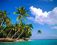 Little Bandos, Male Atoll, Maldive Islands.