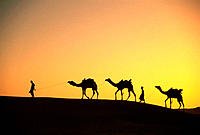 Rajasthan. India