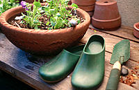 Gardening still life