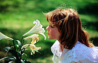 Little girl in lace dress and sunlit brown hair, smelling white lily in garden