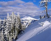 Mt. Scott in background during winter. Crater Lake National Park. Oregon. USA