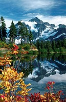 Mount Shuksan reflected in Picture Lake with Sitka Mountain Ash (Sorbus sitchensis). Mount Baker-Snoqualmie National Forest. Washington. USA