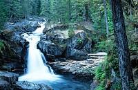 Silver Falls. Mt. Rainier National Park. Washington State. USA