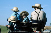 Amish in a buggy. Lancaster County, Pennsylvania. USA