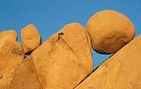 Jumbo Rocks, Joshua Tree National Park. California. USA