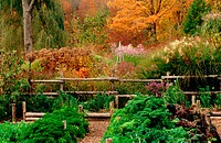 New England Vegetable and Perennial garden in the autumn