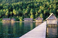 Wooden jetty leads to houses on wooden stilts, diving resort of ´Irian Diving´. Rajat Ampat. Papua, Indonesia