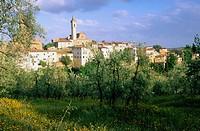Vinci, city of Leonardo. Tuscany. Italy
