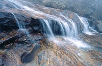 Upper Falls. Graveyard Fields. Blue Ridge Parkway. North Carolina. USA