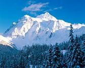 Mount Shuksan. North Cascades National Park, afternoon light. Whatcom County. Washington. USA