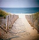 Beach on the Cape Cod national seashore, near Truro. Massachusetts, USA