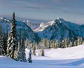Totoosh Range seen from Mazama Ridge. Mt Rainier National Park. Washington. USA
