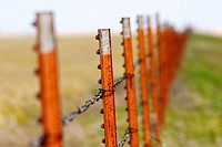 Row of rusted fence posts quickly fading out of focus in the distance, outside Elk City in central Oklahoma, USA