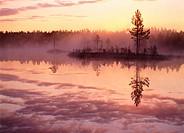 Misty summernight at lake and sunrise. Byske, Västerbotten, Sweden