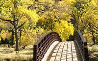 Autumn bridge. Zion National Park in Utah, USA