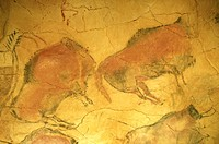 Prehistoric painting of the Altamira cave. Santander. Spain